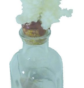 Glass Bottle with sand & Shells and Coral stopper 17cm clear