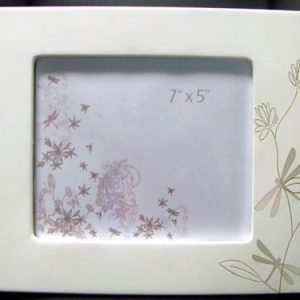 "Photo Frame Dragonflys Landscape  5""x7"""