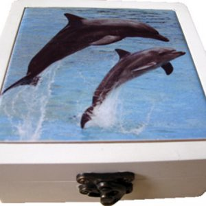 Ceramic Coasters Set of 4 - 113cm - Dolphin Watch
